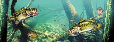 Panfish Posters