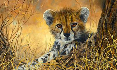 Cheetah Paintings Posters