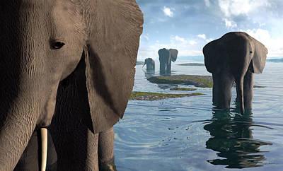 Herd Of Elephants Posters
