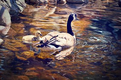 Mother Goose Digital Art Posters
