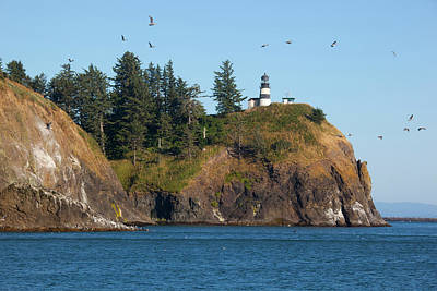 Cape Disappointment Posters