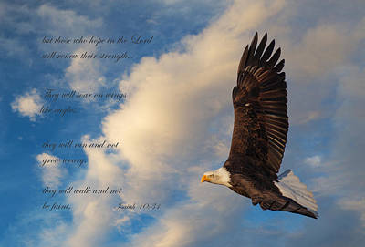 Scripture With Eagle Posters