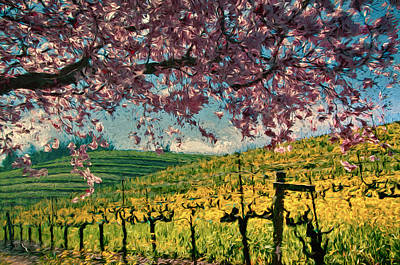Sonoma County Vineyards Mixed Media Posters