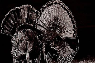 Eastern Wild Turkey Digital Art Posters
