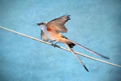 Flycatcher Digital Art Posters