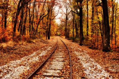 Indiana Autumn Digital Art Posters