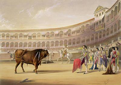 Bullfight Drawings Posters