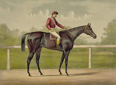 Equestrian Sport Mixed Media Posters