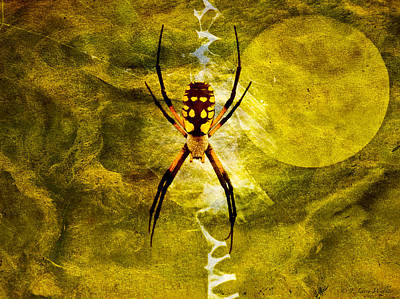 Spider Web Digital Art Posters