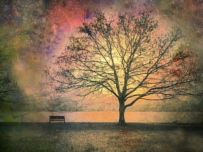 Fantasy Tree Photographs Posters