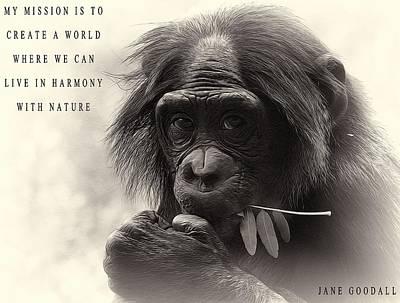 Chimpanzee Mixed Media Posters
