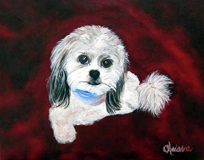 Shih Tsu Paintings Posters