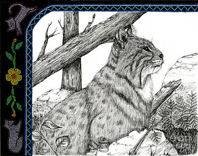 Pen And Ink Bobcats Drawings Posters
