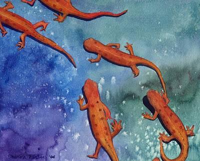 Salamanders Posters
