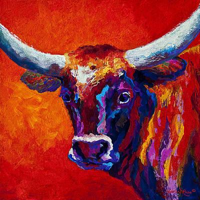Steers Posters