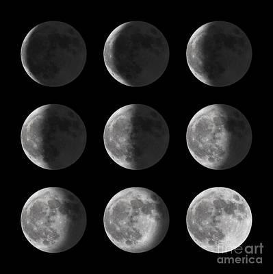 Lunar Cycle Posters | Fine Art America