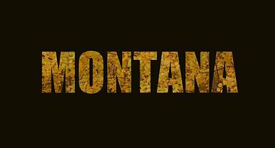 Designs Similar to Montana Gold