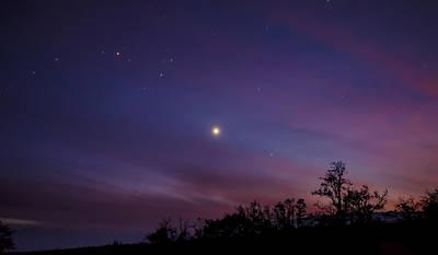 Aureole Of Venus  Poster by Sean King