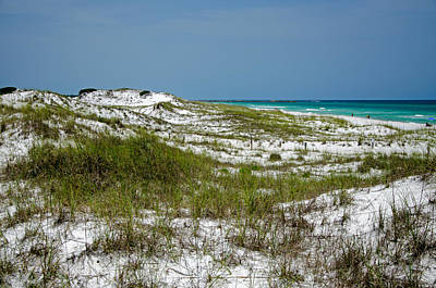 Poster featuring the photograph  Dunes    Panama City Beach  by Susan  McMenamin