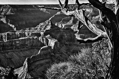 Grand Canyon Hermit View Poster by Bob and Nadine Johnston