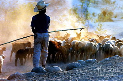 Herder Going Home In Mexico Poster