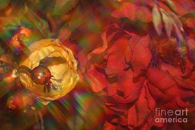 Poster featuring the photograph  Impressionistic Bouquet Of Red Flowers by Dora Sofia Caputo Photographic Art and Design