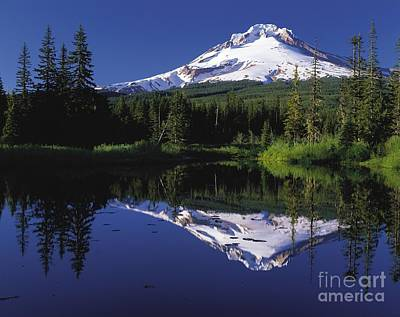 Poster featuring the photograph  Mount Hood Oregon  by Paul Fearn