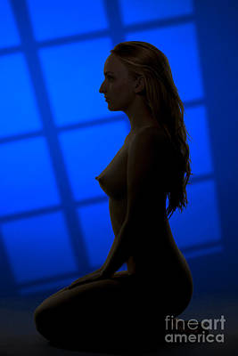 Silhouette Nude In Window 1085.02 Poster