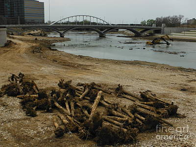 Tree Murder And Lowhead Dam Removal Columbus Ohio Usa 17 Poster by Paddy Shaffer