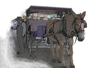 091614 Color Pencil Mule And Carriage Poster by Garland Oldham