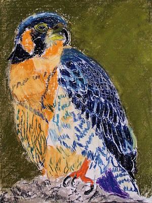 092914 Paragon Falcon Poster