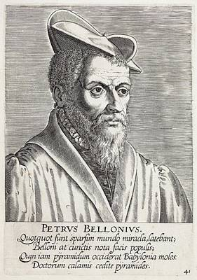 1650's Portrait Pierre Belon Naturalist Poster by Paul D Stewart