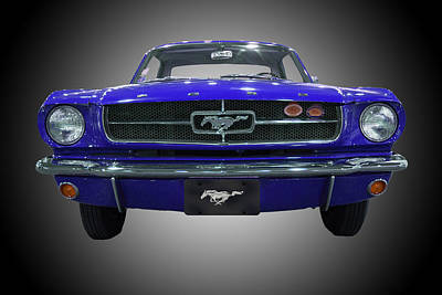 1964 Ford Mustang Poster by Michael Porchik