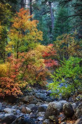 A Beautiful Fall Day  Poster by Saija  Lehtonen