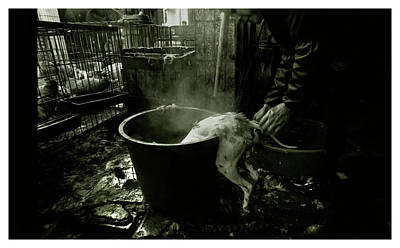 A Butcher Prepares A Dog To Be Boiled Poster