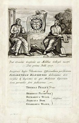 A Curious Herbal (1737) Poster by National Library Of Medicine