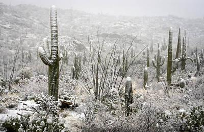 A Desert Snow Day  Poster by Saija  Lehtonen
