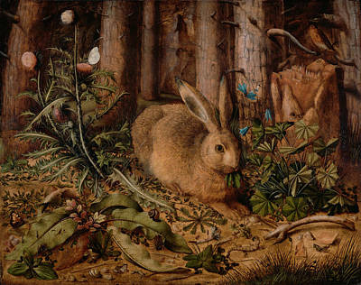 A Hare In The Forest Poster by Hans Hoffmann