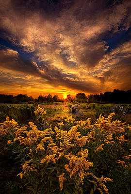A Peaceful Easy Feeling Poster by Phil Koch