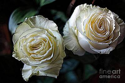 Poster featuring the photograph A Perfect Pair by Diana Mary Sharpton