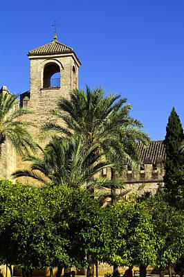 Alcazar Among Palm Trees Poster by John Rocha