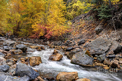 American Fork Canyon Creek In Autumn - Utah Poster by Gary Whitton