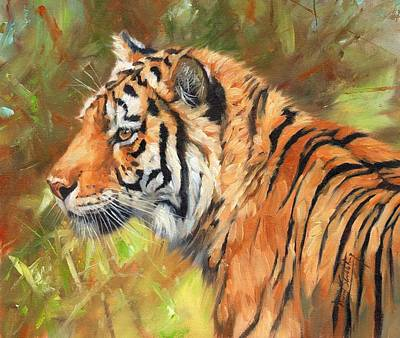 Amur Tiger Painting Poster by David Stribbling