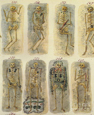 Ancient Celtic Cemetery, Hallstatt Poster by Science Source