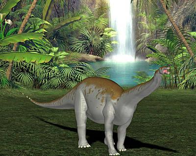 Apatosaurus Dinosaur Poster by Friedrich Saurer
