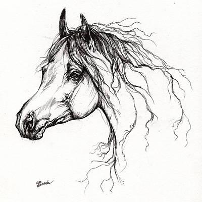 Arabian Horse Drawing 37 Poster by Angel  Tarantella