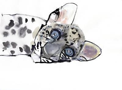 Arabian Leopard Poster
