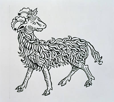 Aries An Illustration From The Poeticon Poster by Italian School