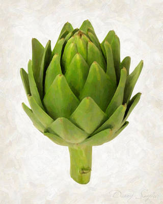 Artichoke Isolated On White Poster by Danny Smythe