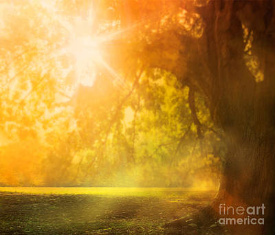 Autumn Background Poster by Mythja  Photography